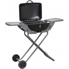 3-1 Combo Portable Gas BBQ